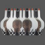canada goose decoys, snow goose decoys, best decoys